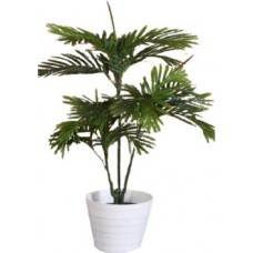 Green Petals Green Anthurium Artificial Flower with Pot  (43.5 inch, Pack of 1)